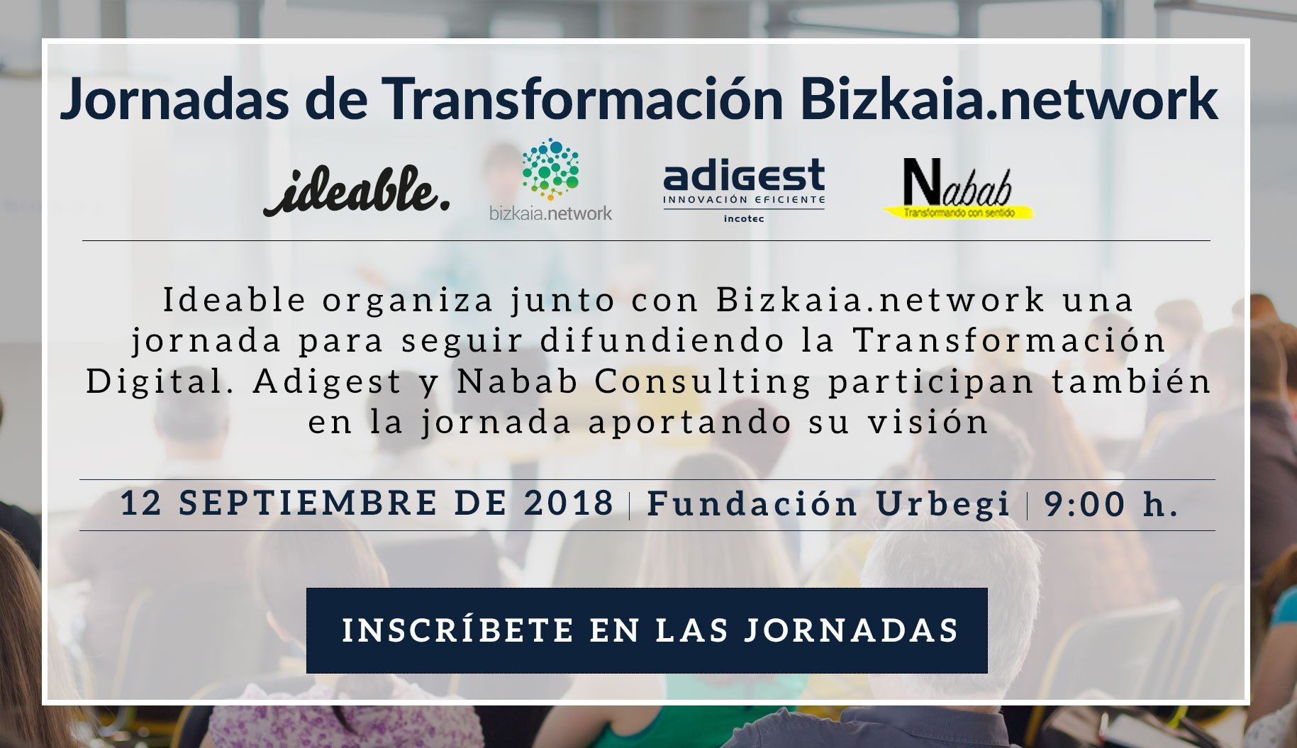 Ideable Bizkaia-network
